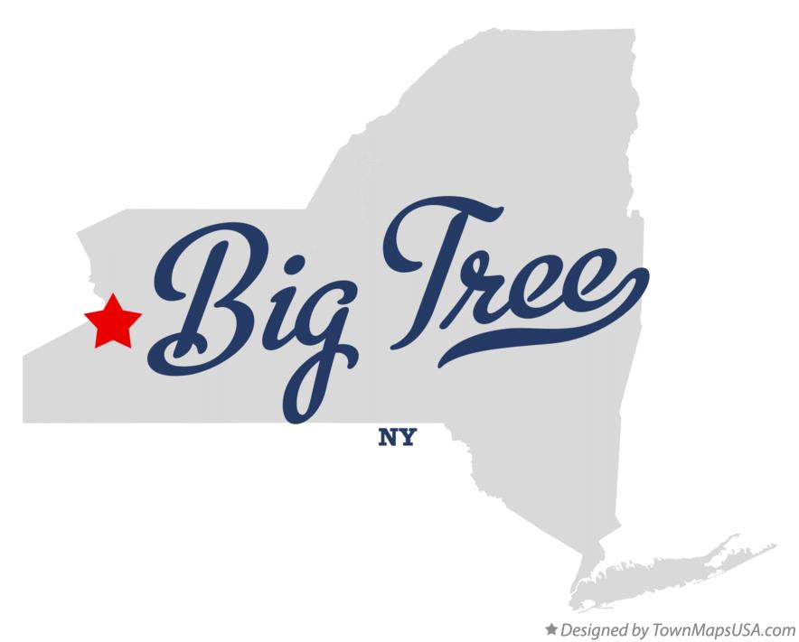 Map of Big Tree New York NY