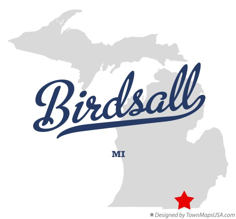 Map of Birdsall Michigan MI