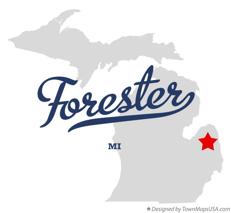 Map of Forester Michigan MI