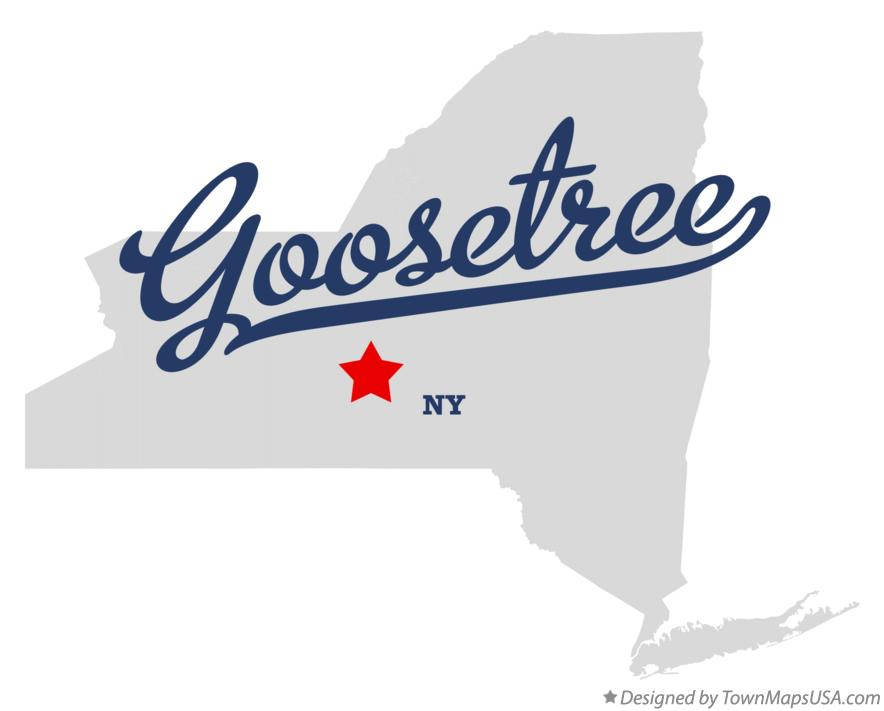 Map of Goosetree New York NY