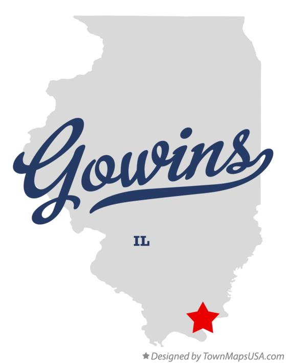 Map of Gowins Illinois IL