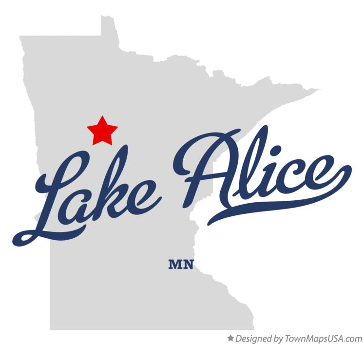 Map of Lake Alice Minnesota MN