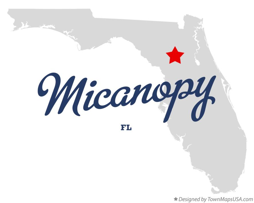 Map of Micanopy Florida FL