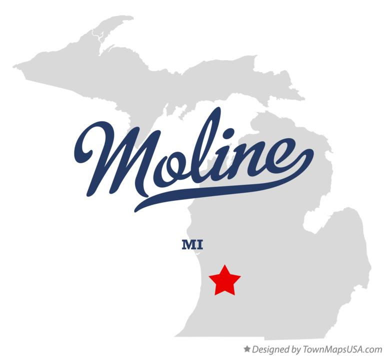 Map of Moline Michigan MI