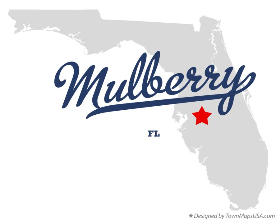 Map of Mulberry Florida FL
