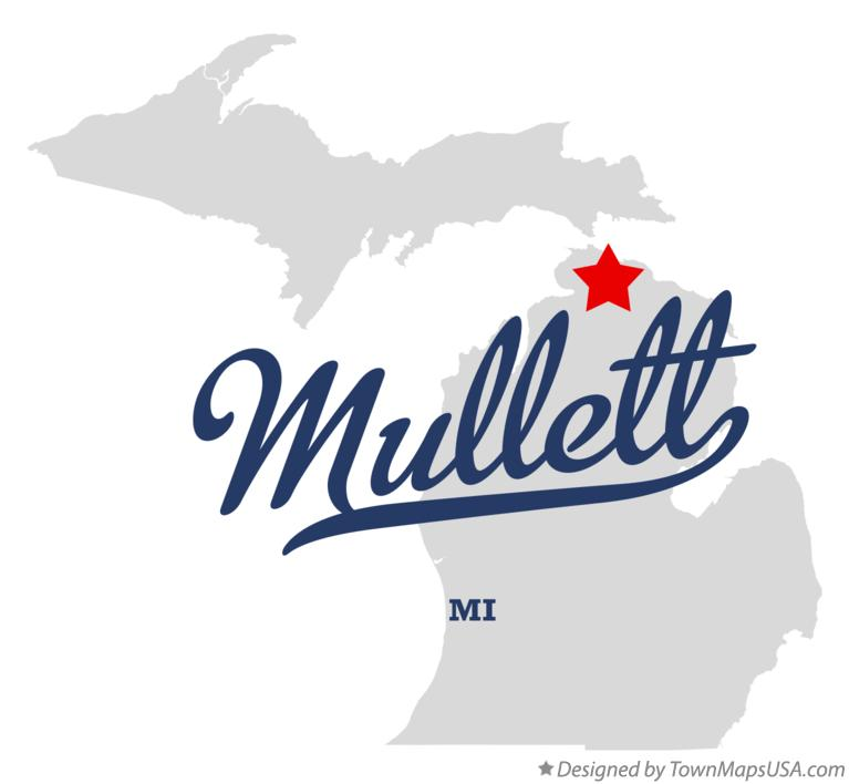 Map of Mullett Michigan MI