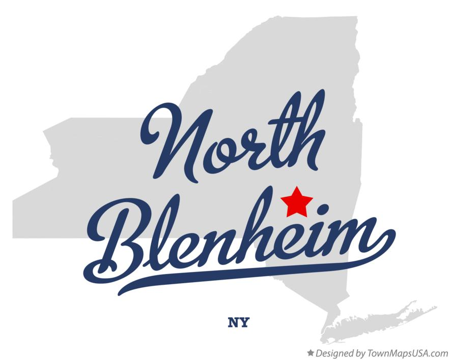 Map of North Blenheim New York NY