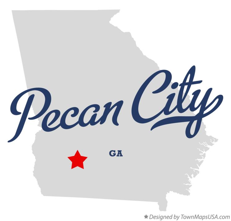 Map of Pecan City Georgia GA