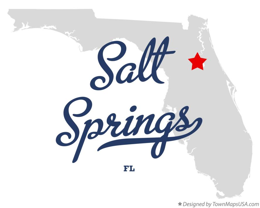 Salt Springs Fl Map Map of Salt Springs, FL, Florida