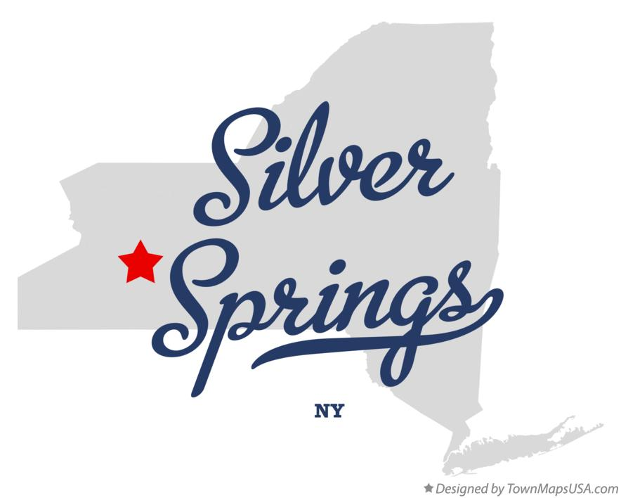 Map of Silver Springs New York NY
