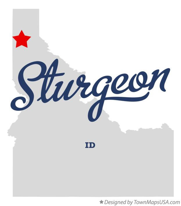 Map of Sturgeon Idaho ID